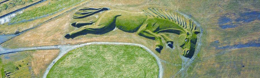 Parc Penallta Sultan pit pony